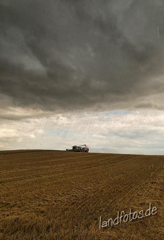 Immer wieder wird die Ernte von Regenschauern unterbrochen.